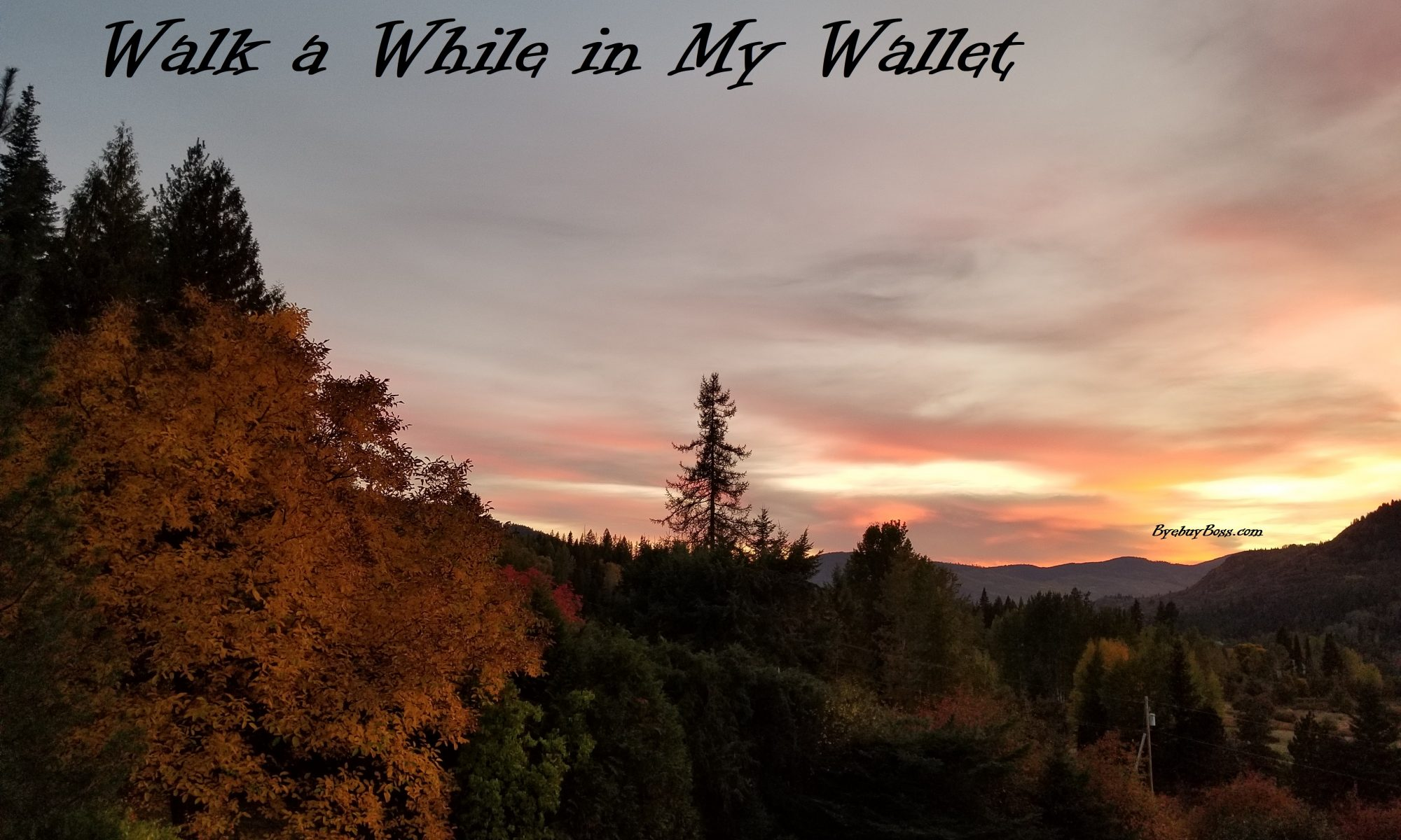 Walk a While in My Wallet